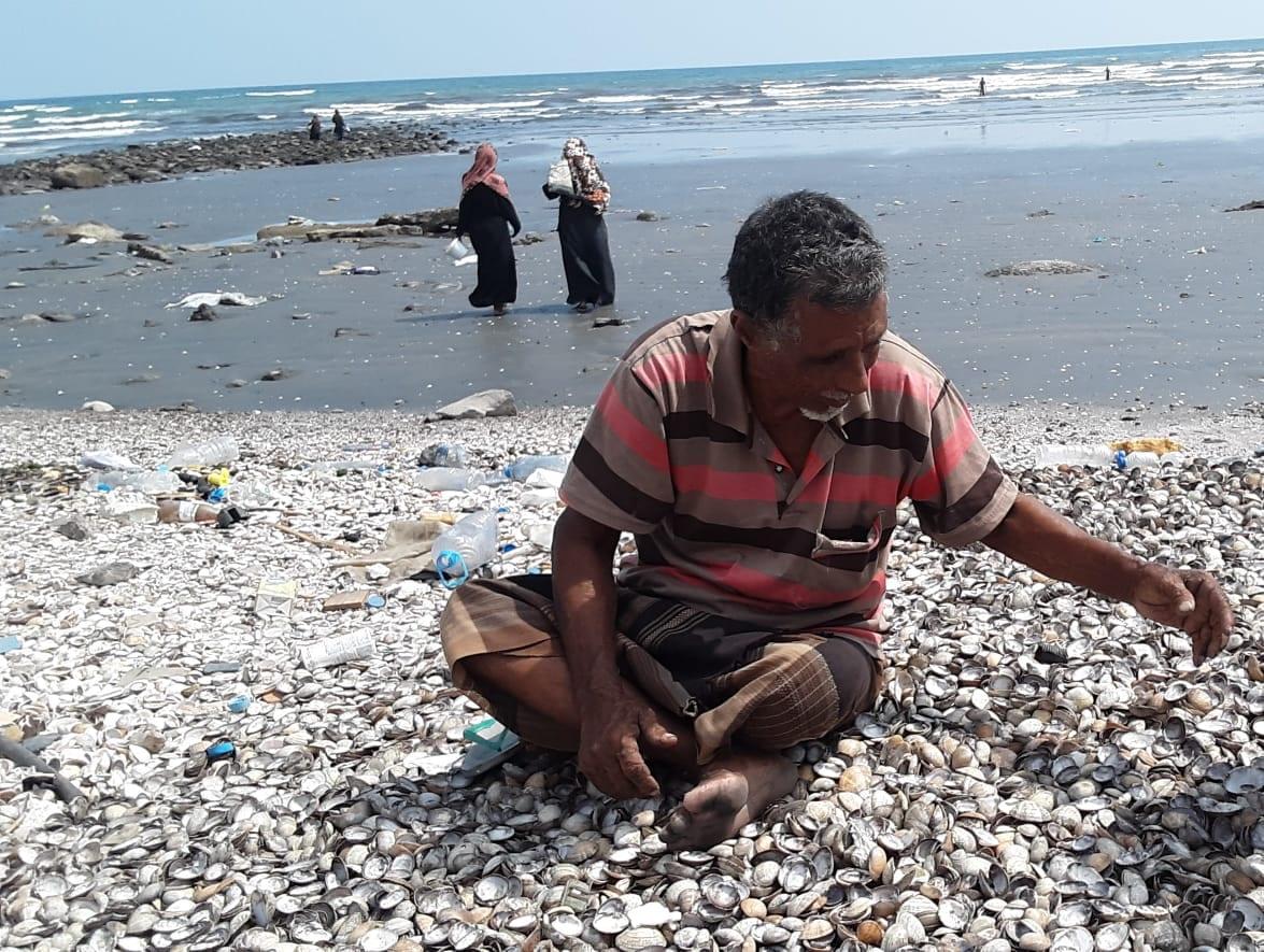 شيخة ورفيقاتها بين أكوام الرمال يجمعن المحار على بحر العرب